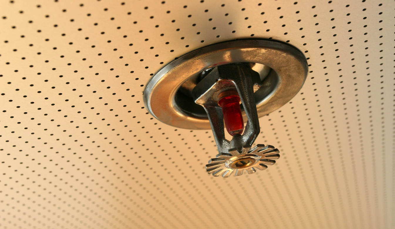TLC Fire Sprinkler